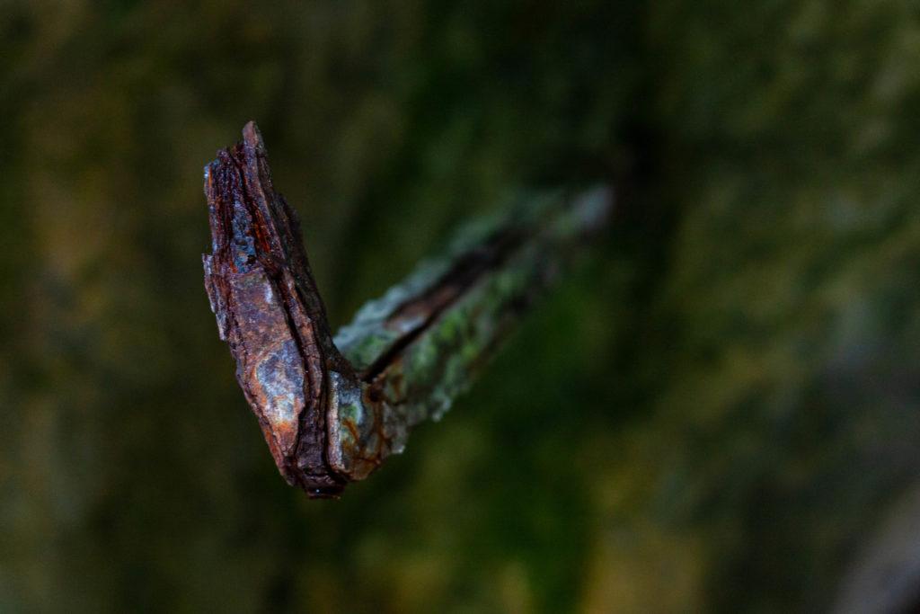 Rostig detalj vid Garpa gruva