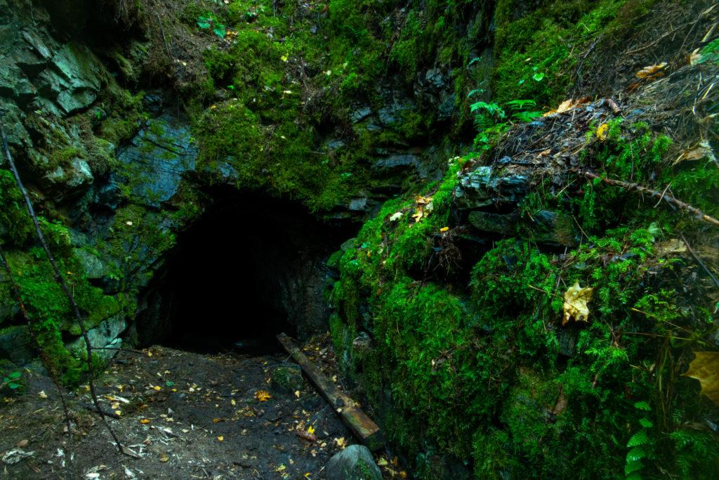 Ingången till stollgången vid Fridhems guldgruva